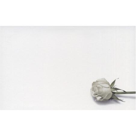 Carte remerciement décès rose blanche et tige verte Decorte 6552